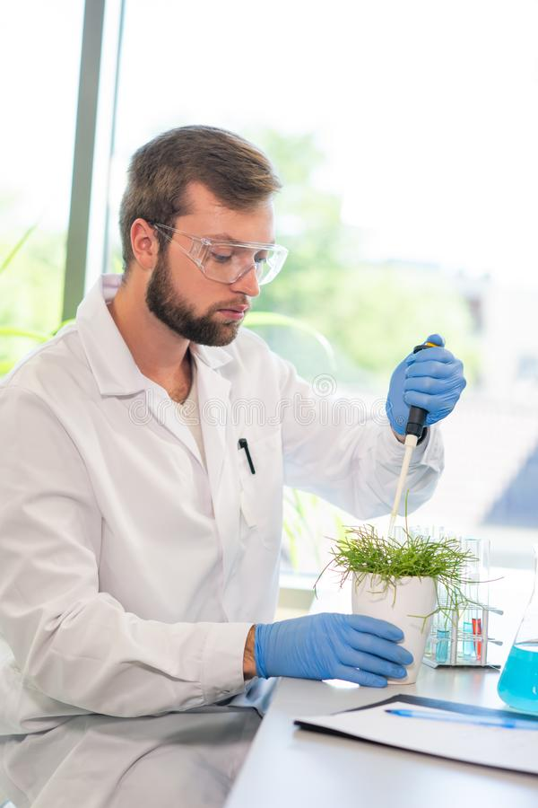 Scientist working in lab. Doctor making microbiology research. Laboratory tools: microscope, test tubes, equipment. Biotechnology, genetics, biochemistry royalty free stock photos