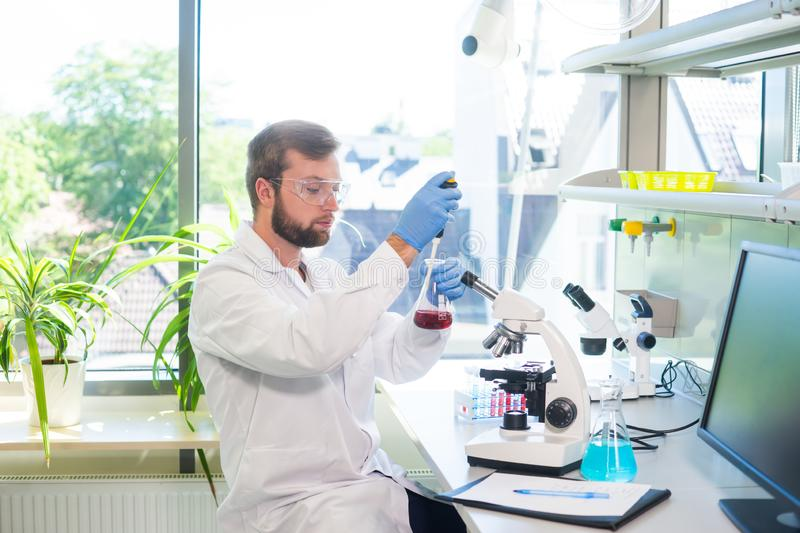 Scientist working in lab. Doctor making microbiology research. Laboratory tools: microscope, test tubes, equipment. Biotechnology, chemistry, bacteriology royalty free stock photography