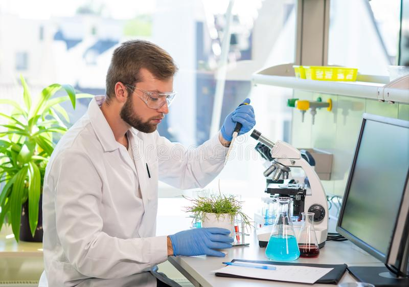 Scientist working in lab. Doctor making microbiology research. Laboratory tools: microscope, test tubes, equipment. Biotechnology, genetics, biochemistry royalty free stock image