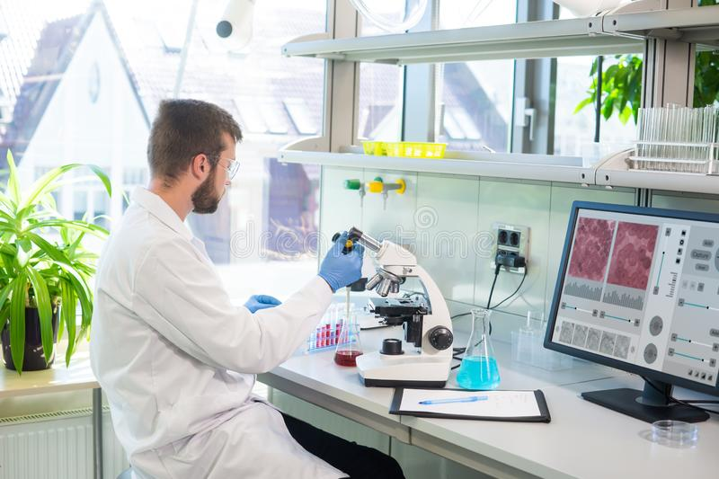 Scientist working in lab. Doctor making microbiology research. Laboratory tools: microscope, test tubes, equipment. Biotechnology, chemistry, bacteriology stock photos