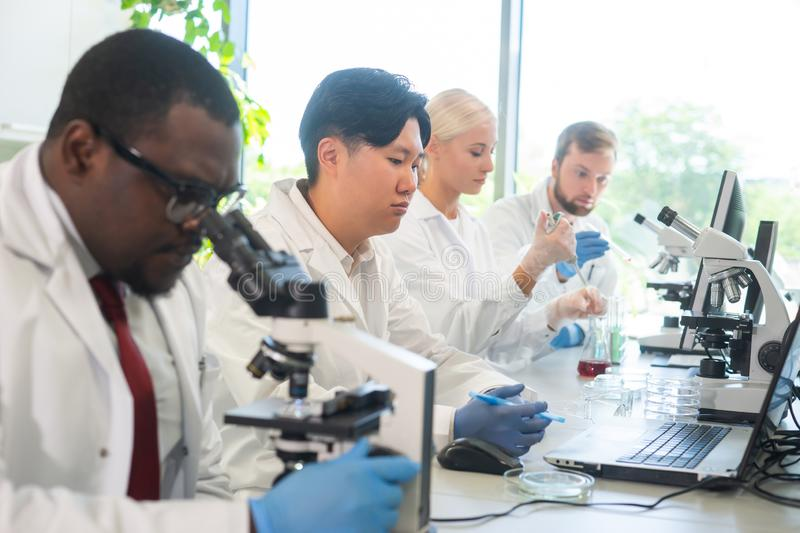 Scientist working in lab. Doctors making medical research. Biotechnology, chemistry, science, experiments and healthcare. Scientist working in lab. Doctors stock photos