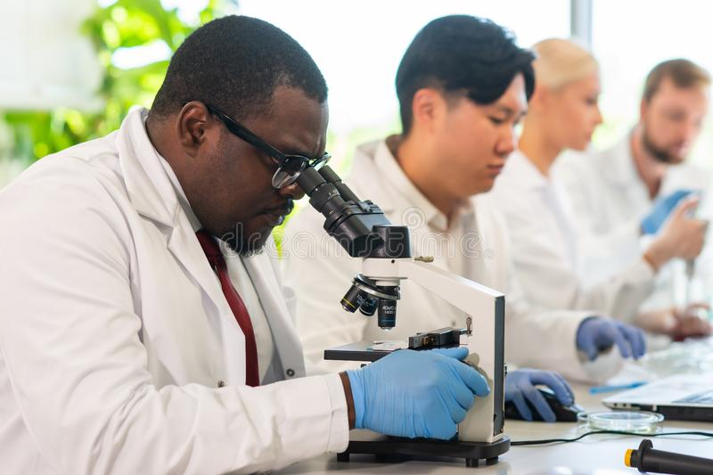 Scientist working in lab. Doctors making medical research. Biotechnology, chemistry, science, experiments and healthcare. Scientist working in lab. Doctors royalty free stock photo