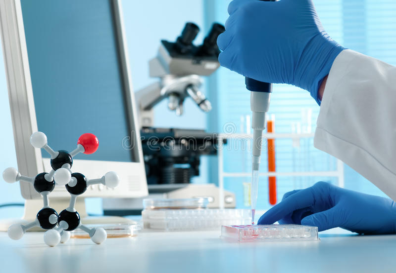 Scientist working at the laboratory stock photos