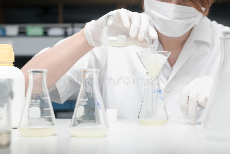 Scientist working in laboratory, testing samples royalty free stock photos