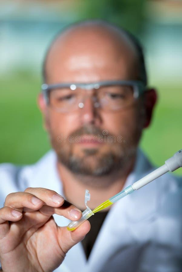 Scientist with yellow liquid stock photos
