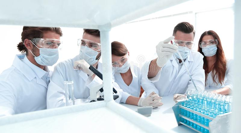 Scientists at chemical laboratory during work. Photo with copy space royalty free stock photography