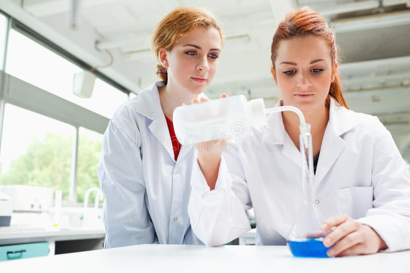Download Scientists Doing An Experiment Stock Photo - Image: 21247198