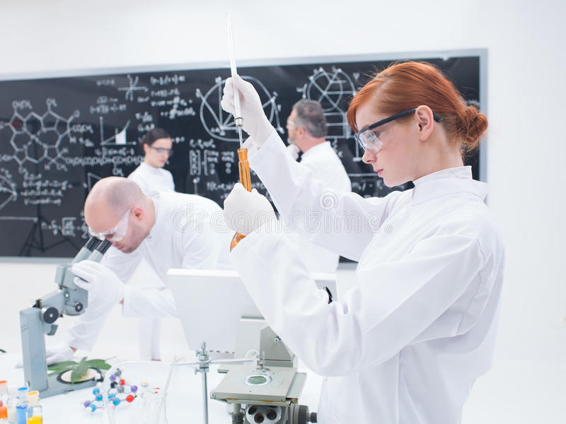 Scientists  Laboratory Experiments Royalty Free Stock Image