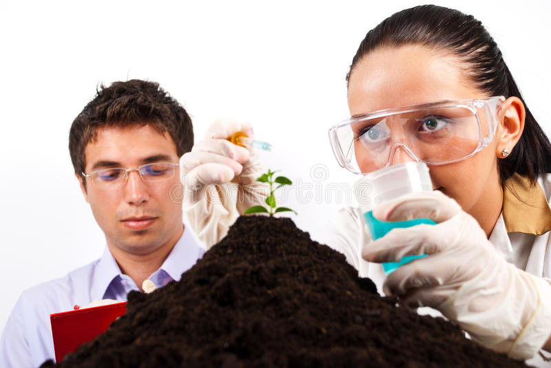 Download Scientists Making Experiment Stock Image - Image: 15026295