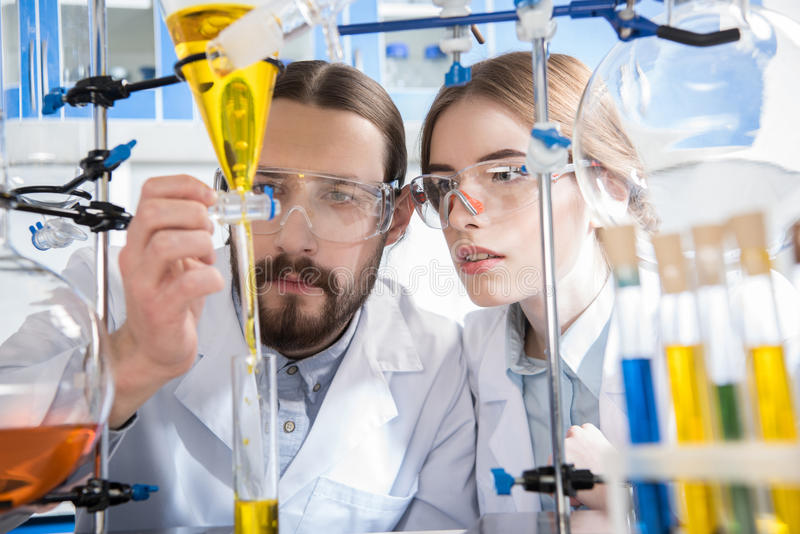 Scientists making experiment royalty free stock photography