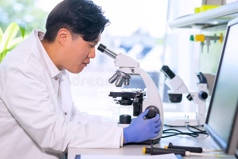Scienziato asiatico che lavora nel laboratorio Medico che fa ricerca in microbiologia Strumenti del laboratorio: microscopio, pro fotografia stock libera da diritti