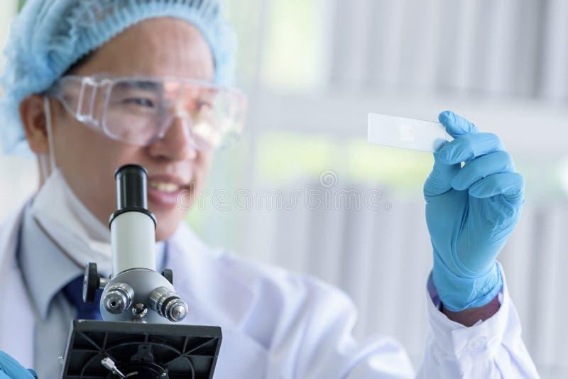 Scienziato asiatico dell'uomo che ricerca e che impara in un laboratorio immagini stock