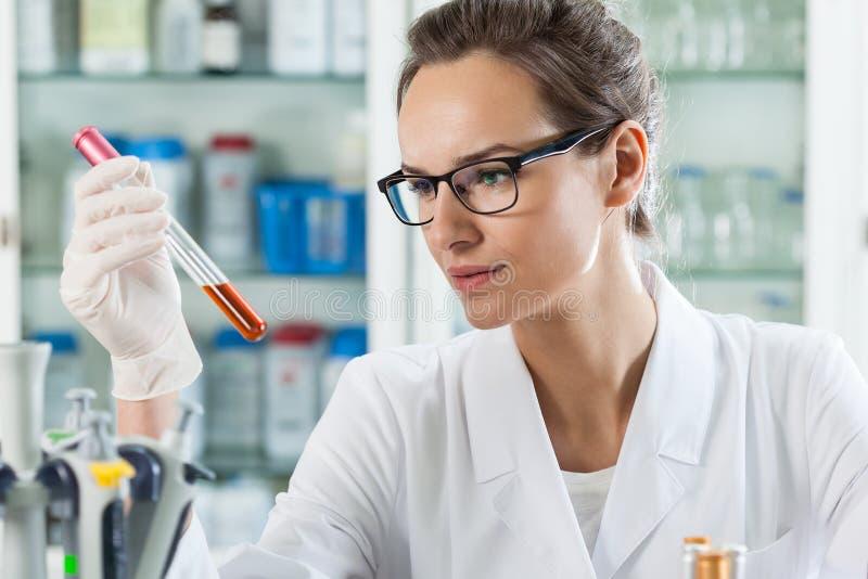 Scienziato che analizza liquido chimico fotografia stock libera da diritti
