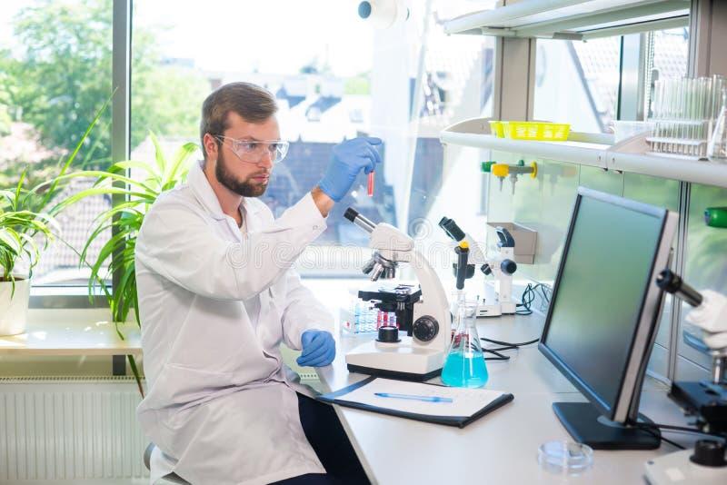Scienziato che lavora nel laboratorio Medico che fa ricerca in microbiologia Strumenti del laboratorio: microscopio, provette, at immagini stock libere da diritti