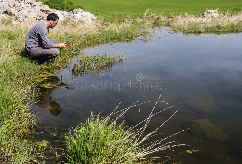 Scienziato che misura qualità dell'acqua ambientale in una zona umida immagini stock libere da diritti