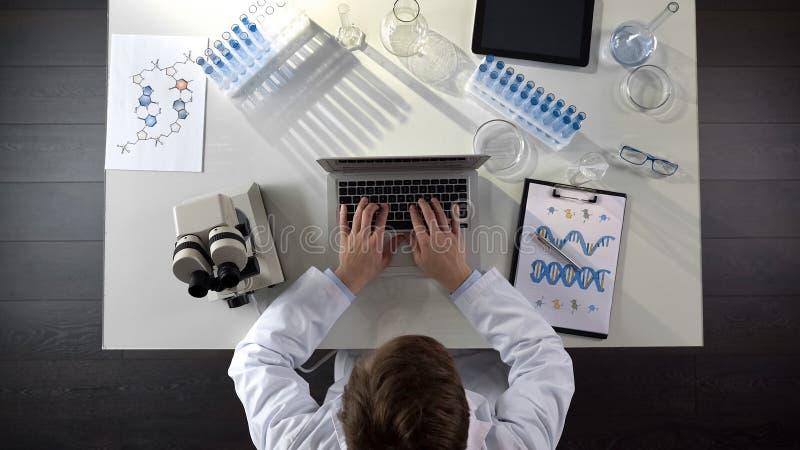 Scienziato della genetica che intraprende gli studi medici di DNA, scriventi sul computer portatile, vista superiore fotografia stock libera da diritti
