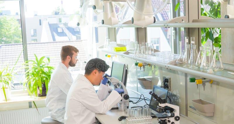 Scienziato e studenti che lavorano nel laboratorio Aggiusti gli interni d'istruzione per fare analizzare la ricerca Biotecnologia fotografie stock