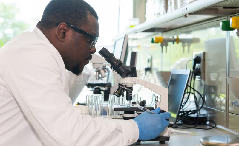 Scienziato e studenti che lavorano nel laboratorio Aggiusti gli interni d'istruzione per fare analizzare la ricerca Biotecnologia fotografia stock