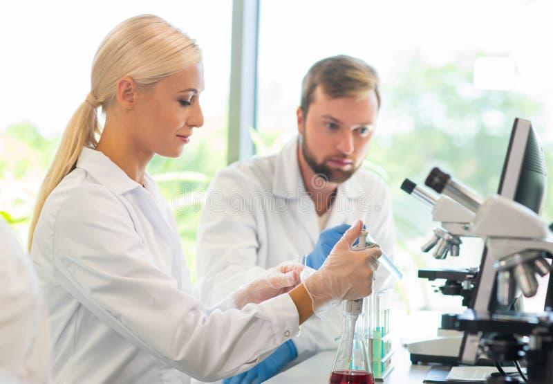 Scienziato e studenti che lavorano nel laboratorio Aggiusti gli interni d'istruzione per fare analizzare la ricerca Biotecnologia fotografia stock libera da diritti