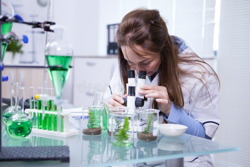 Scienziato femminile che regola il suo microscopio in un laboratorio di biotecnologia immagine stock