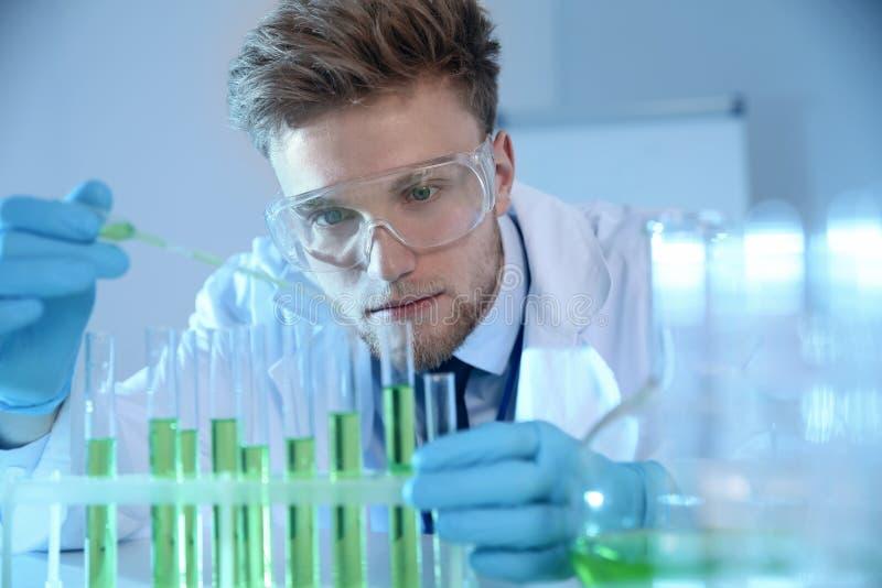 Scienziato maschio che lavora con il campione in laboratorio fotografia stock