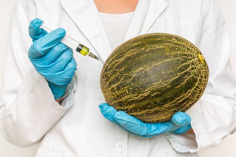 Scienziato OMG che inietta liquido dalla siringa nel melone immagini stock libere da diritti