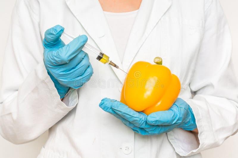 Scienziato OMG che inietta liquido dalla siringa nel pepe giallo fotografia stock