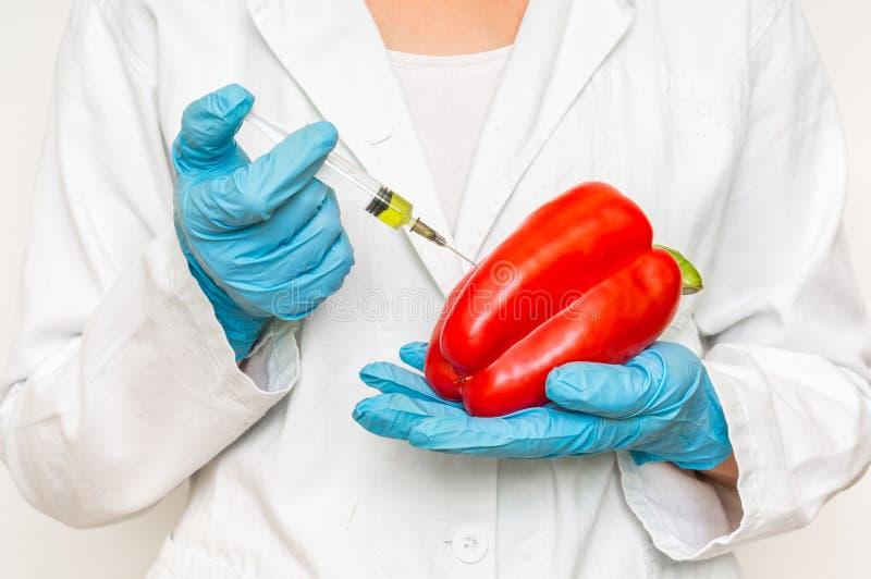 Scienziato OMG che inietta liquido dalla siringa nel peperone immagine stock libera da diritti