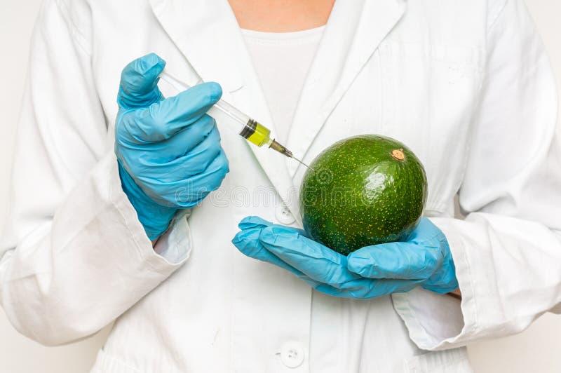 Scienziato OMG che inietta liquido dalla siringa nell'avocado immagine stock