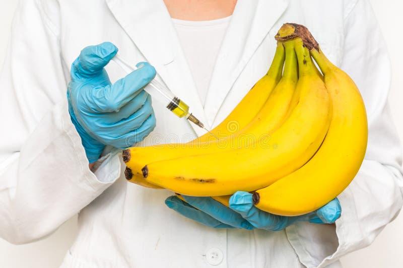 Scienziato OMG che inietta liquido dalla siringa nelle banane fotografia stock libera da diritti