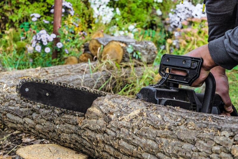 Scier un rondin en bois avec une tronçonneuse électrique de main photographie stock libre de droits