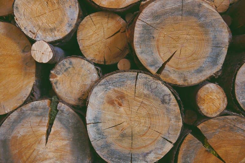 Scierie, fond en bois de texture, rondins photos stock