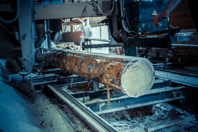 scierie Le processus de l'usinage ouvre une session des scies de machine de scierie le tronc d'arbre photographie stock