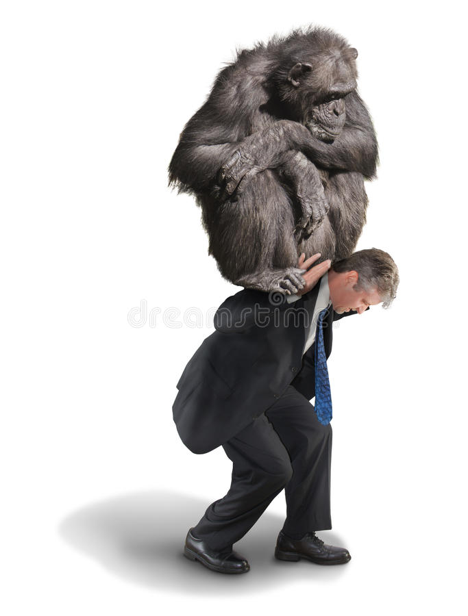 Scimmia sul vostro carico finanziario di tossicodipendenza posteriore fotografie stock
