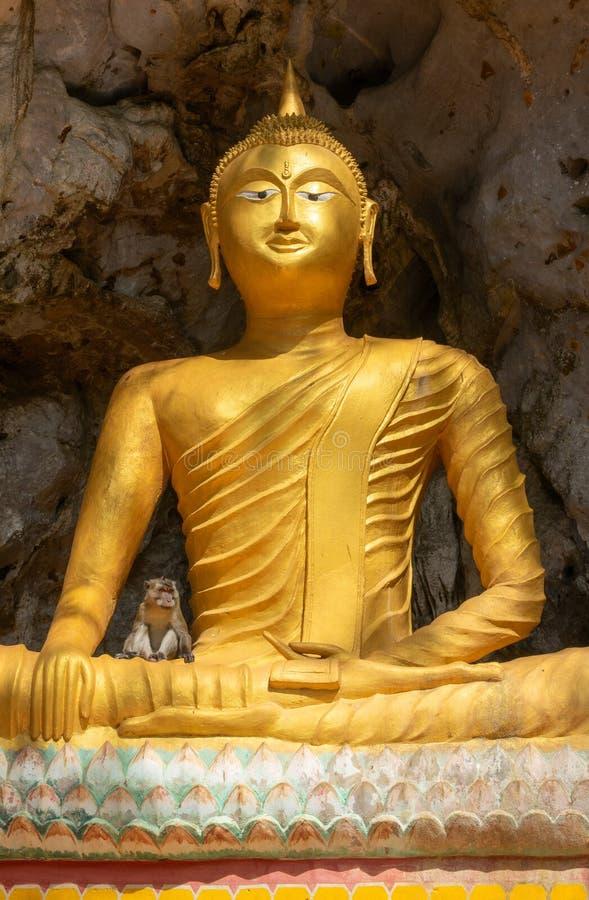 Scimmia sulla statua di Buddha in tempio immagini stock libere da diritti