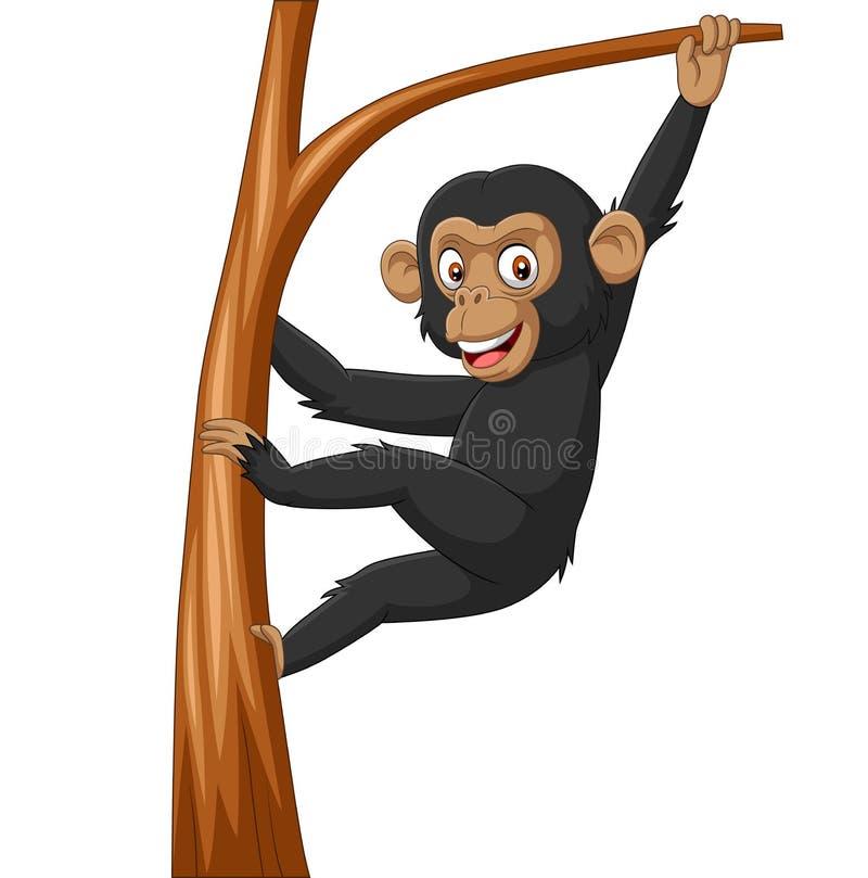 Scimpanzè del bambino del fumetto che appende nel ramo di albero illustrazione di stock