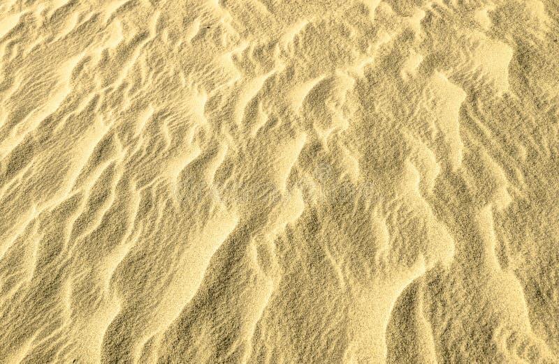 Scintillio dorato sul fondo della sabbia fotografia stock libera da diritti