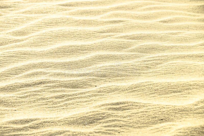 Scintillio dorato sul fondo della sabbia fotografia stock