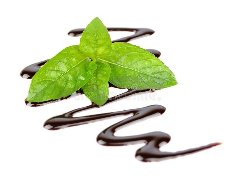 Sciroppo di cioccolato con la menta fresca fotografia stock libera da diritti
