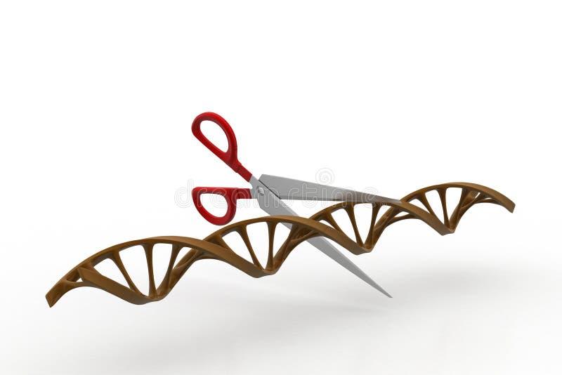 Scissor cortar la estructura de la DNA libre illustration