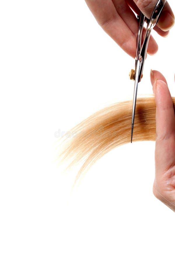 Scissors stock images