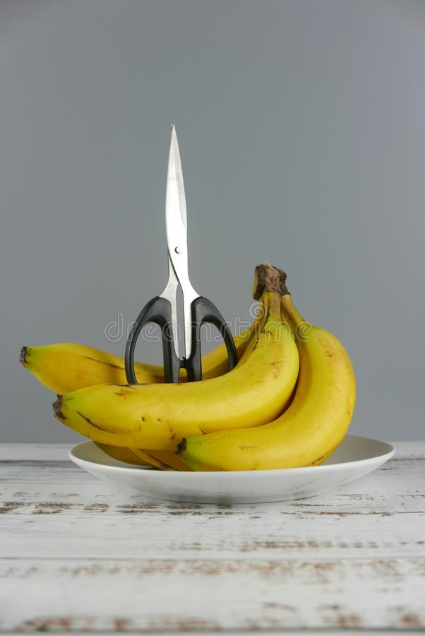 Scissors and bunch of bananas on wooden background. Healthcare concept. Copy Space for text or logo. Vertical shot. Penis, adult, cutting, dysfunction royalty free stock photography