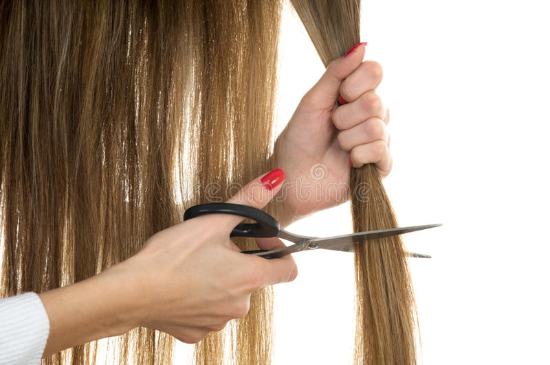 Download Scissors Trying To Cut Long Hair Stock Photo - Image: 12817280