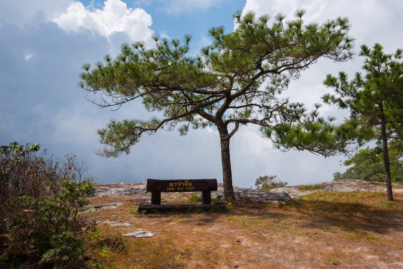 Scogliera di peccato dell'inceppamento al parco nazionale di PhuKradueng immagini stock