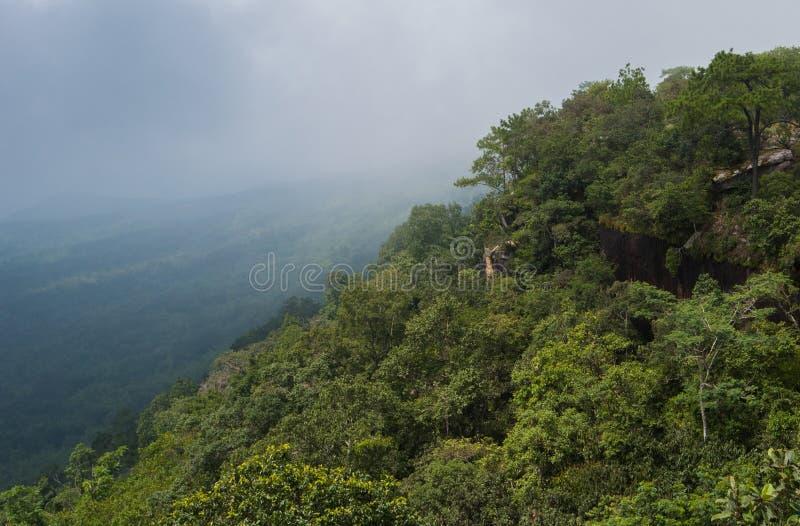 Scogliera di peccato dell'inceppamento al parco nazionale di PhuKradueng fotografia stock