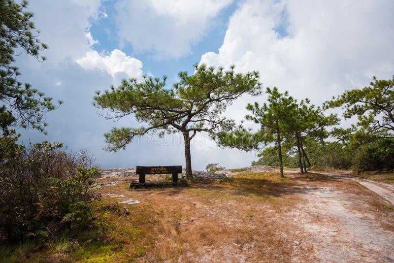 Scogliera di peccato dell'inceppamento al parco nazionale di PhuKradueng immagine stock