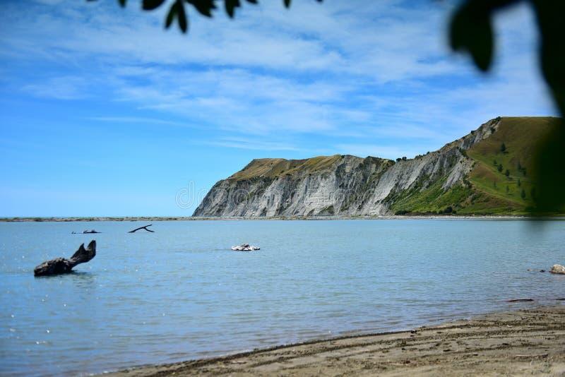 Scogliere bianche lungo una costa nella baia di Hawkes, Nuova Zelanda fotografia stock libera da diritti