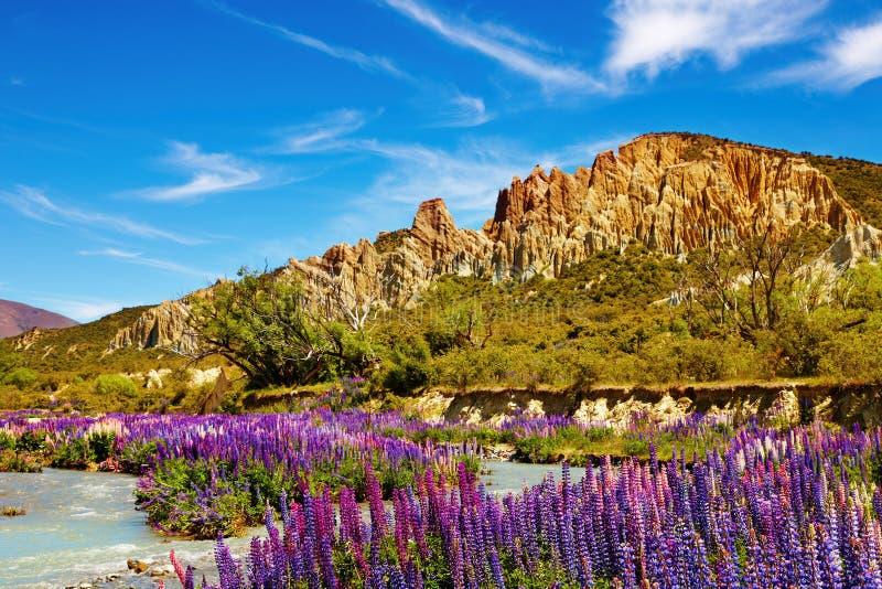Scogliere dell'argilla, Nuova Zelanda fotografia stock
