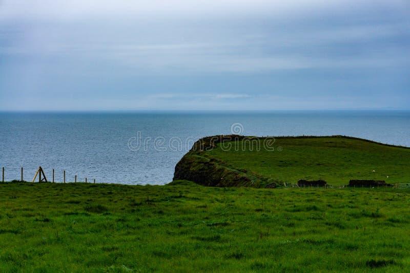 Scogliere dell'oceano in Irlanda del Nord fotografia stock