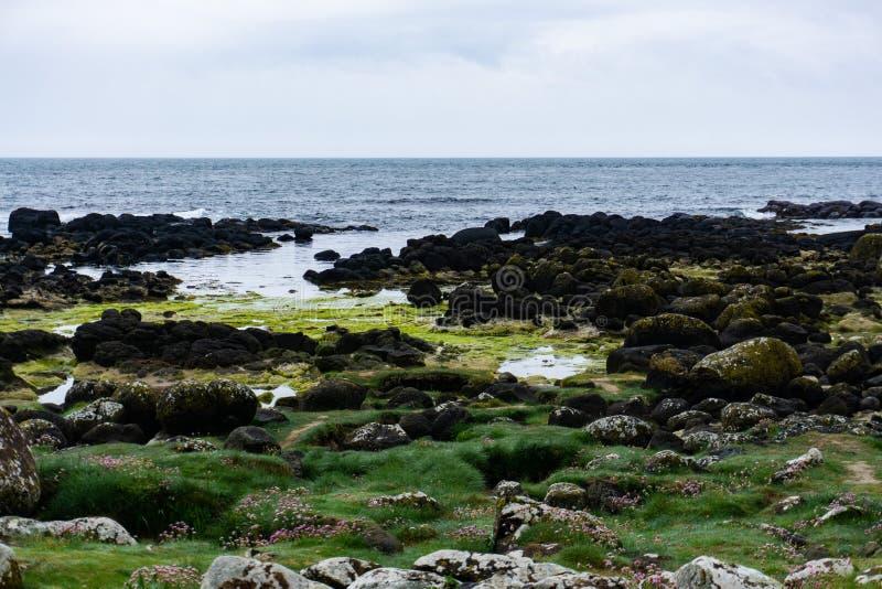 Scogliere dell'oceano in Irlanda del Nord immagine stock libera da diritti